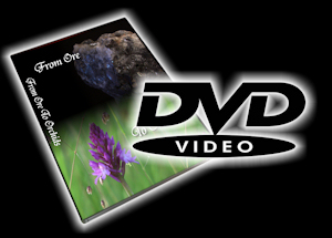 Purchase 'FromOreToOrchids' on standard definition DVD