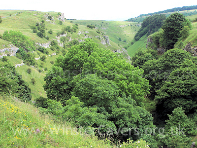 Looking down onto the hidden delights of Lathkill Dale