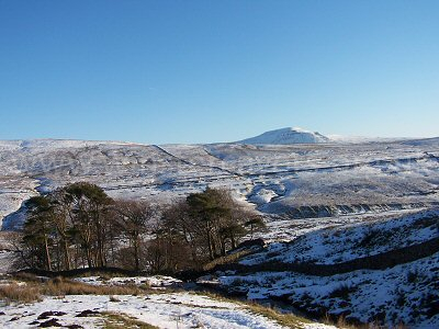 Ingleborough Hill, one of the Three Peaks in the Yorkshire Dales, as seen across Kingsdale from Yordas Plantation - December 2008